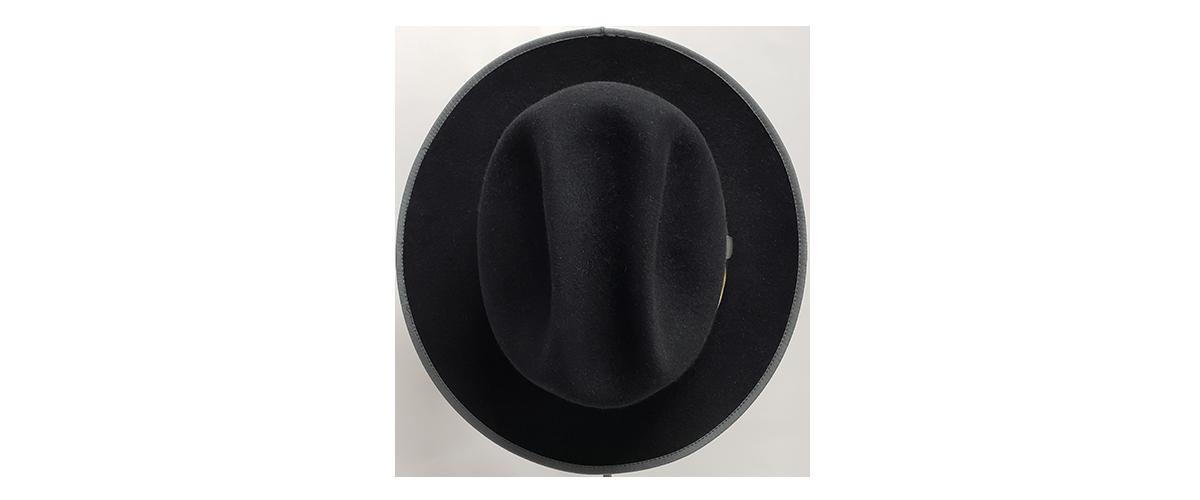 Black Dress Fedora 0003s 0002 20200724 093945